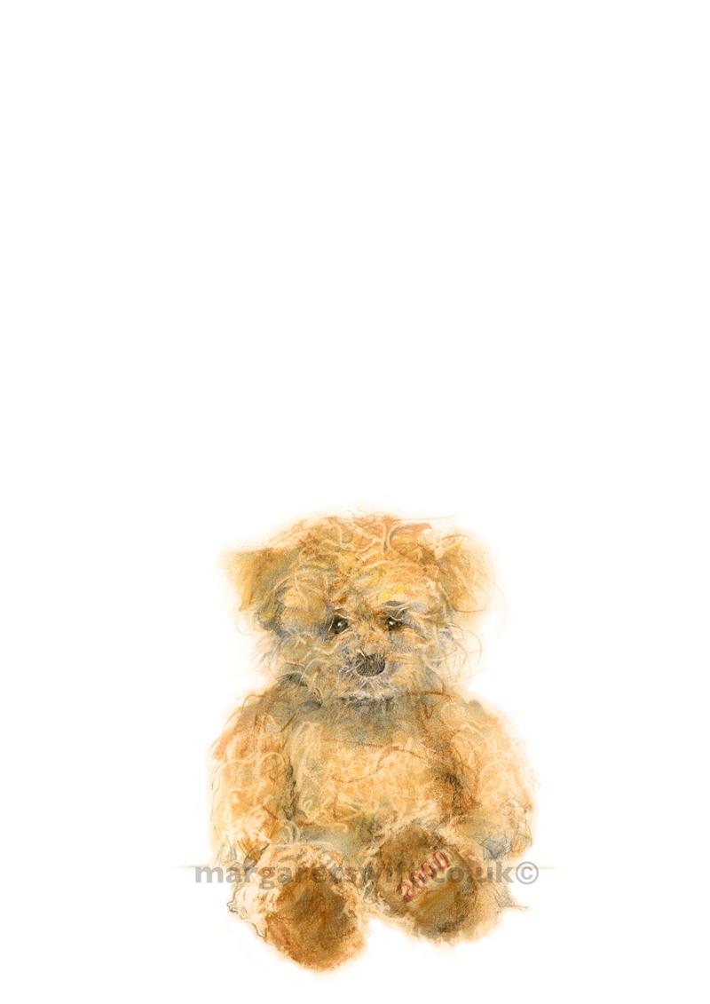 '2000 Teddy'